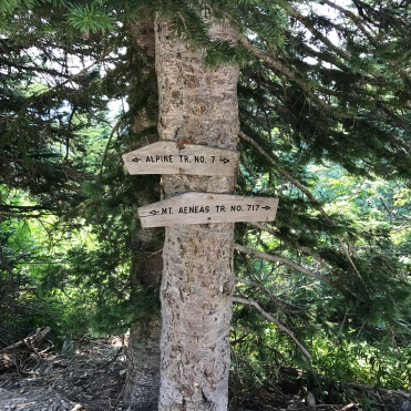 Trail markers assure we are, in fact, on the right trail.