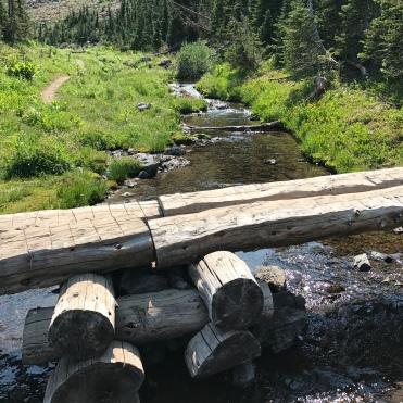 A makeshift but longstanding log bridge.